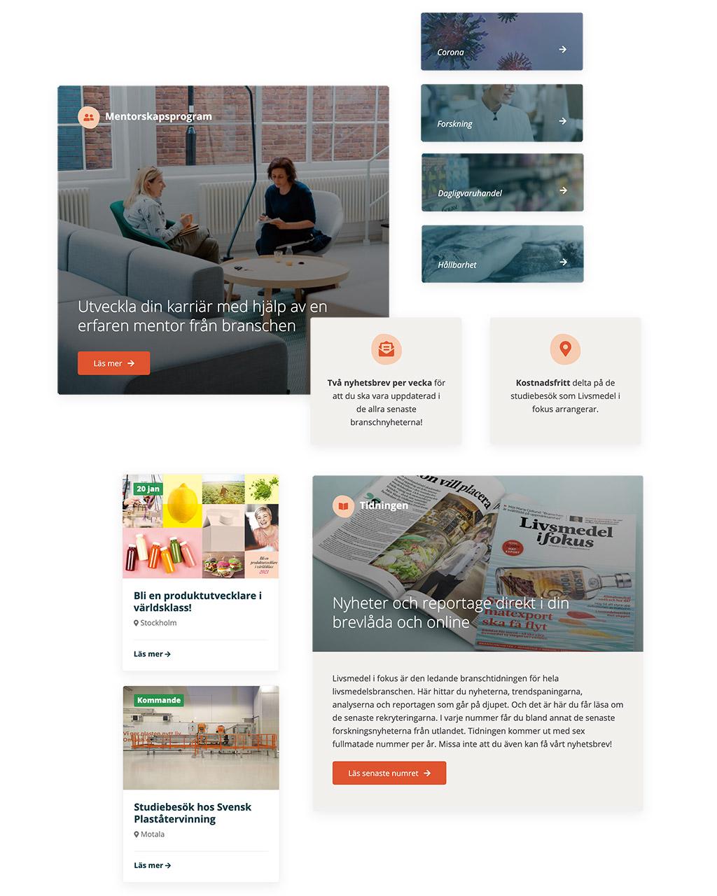 Livsmedel i fokus webbdesign