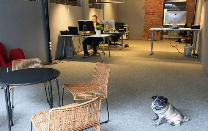 Bishop Media – nytt kontor i Norrköping på Drottninggatan 20